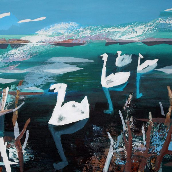 White desires of unspoiled nature wing its way as swans from the banks of a green river