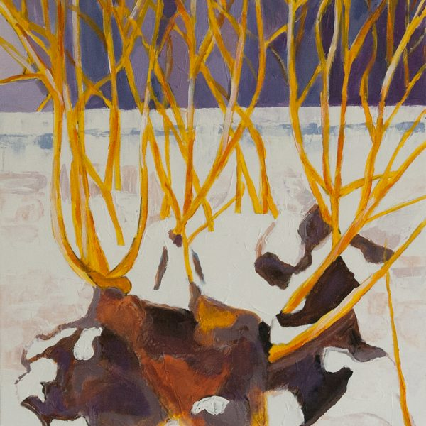 The gold branches of willow are brading on the purple background of the winter.