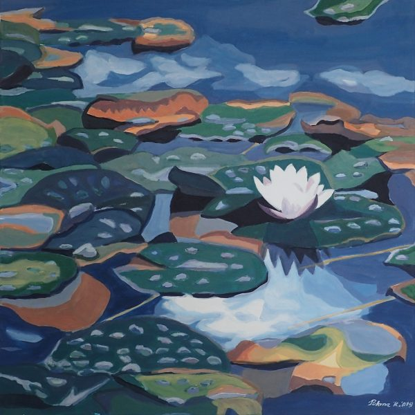 Water lilies on lake Lovrence